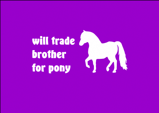 'Will trade brother for pony'